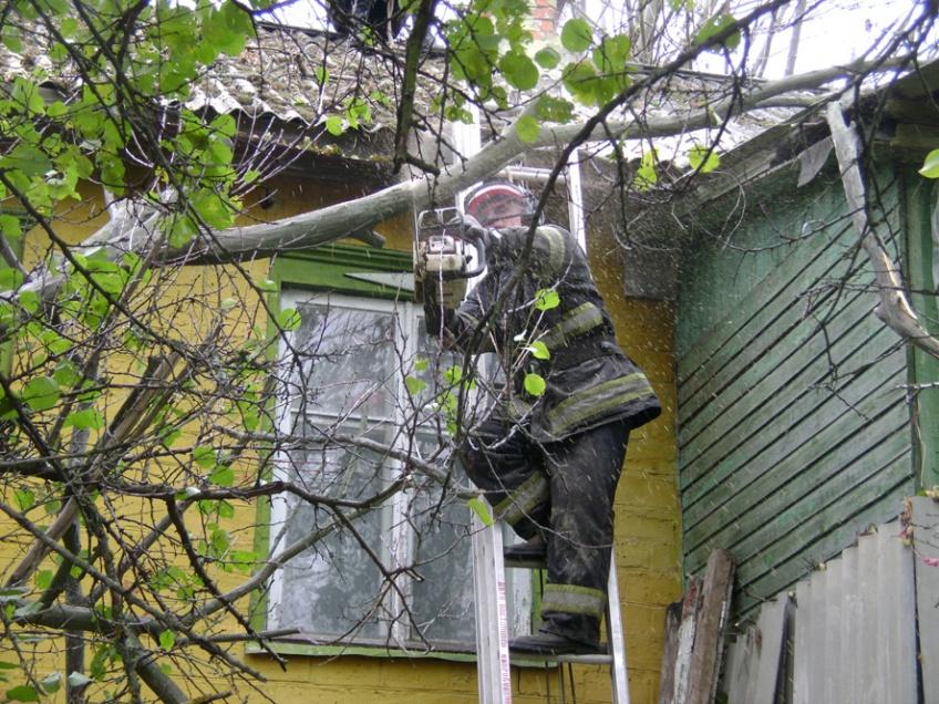 """Результат пошуку зображень за запитом """"дерево впало на будинок"""""""